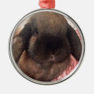 Maak uw dag met een klein bontgezicht speciaal! zilverkleurig rond ornament