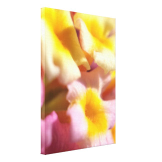 Macro bloemencanvasdruk canvas afdruk