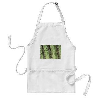 macro dichte omhooggaand van cactusdoornen standaard schort