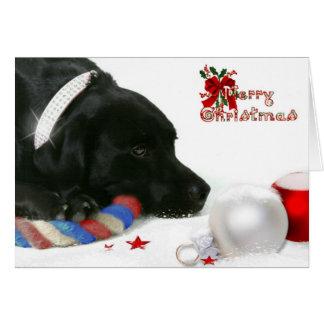Madison de Zwarte Kerstkaart van Labrador Briefkaarten 0