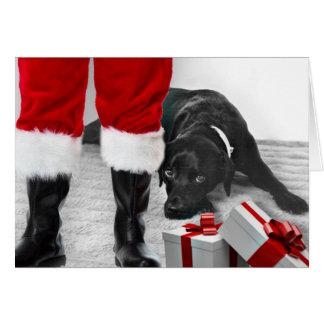 Madison de Zwarte Kerstkaart van Labrador Kaart