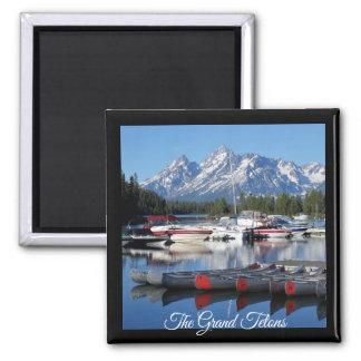 Magneet van het Park van Grand Teton de Nationale