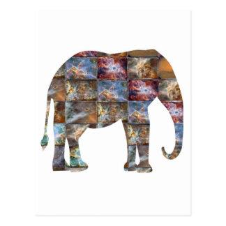 Majestueus Vriendschappelijk Dier: De Marmeren Briefkaart