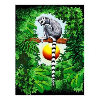 Maki van Madagascar Briefkaart