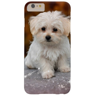 Maltees Schattig Puppy… Barely There iPhone 6 Plus Hoesje