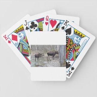 Mamma's en de Amerikaanse elanden van het Baby Bicycle Speelkaarten