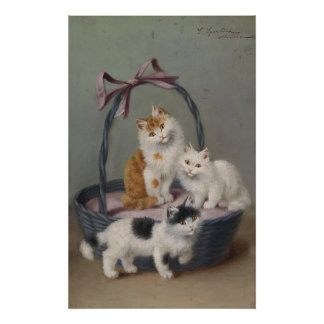 Mand van het Poster van de Steen van Katjes