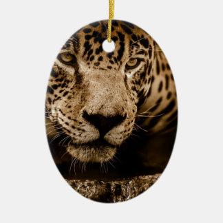 Mannetje van de Ogen van het Water van Jaguar het Keramisch Ovaal Ornament