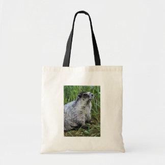 Marmot Draagtas