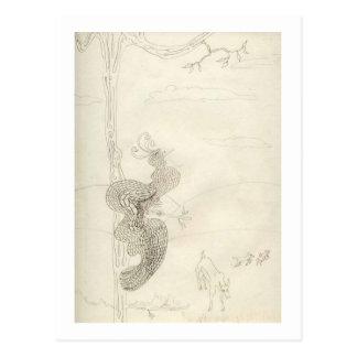 Matilda de Glorierijke Paradijsvogel Briefkaart