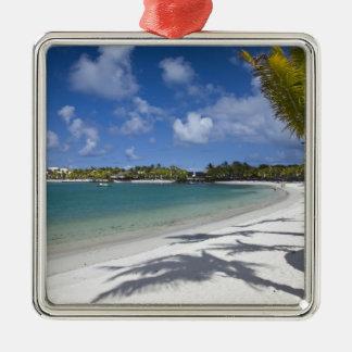 Mauritius, Oostelijk Mauritius, Trou d Eau Douce, Zilverkleurig Vierkant Ornament