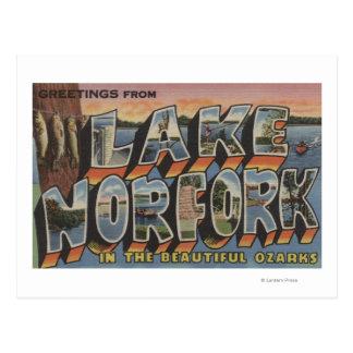 Meer Norfork, Arkansas - de Grote Scènes van de Briefkaart