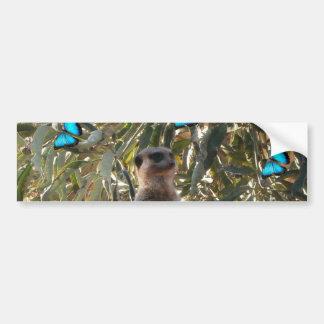 Meerkat en Blauwe Vlinders, Bumpersticker