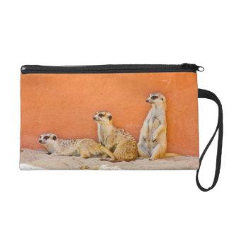 Meerkats op een Oranje Muur Tasje Met Polsbandje