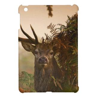 Mengsels van een de Mannelijke Rode Hert in het Hoesjes Voor iPad Mini
