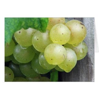 Met dauw bedekte Groene Druiven Kaart