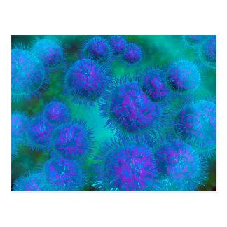 Microscopisch Uitzicht van Bacterie Diplococcus Briefkaart