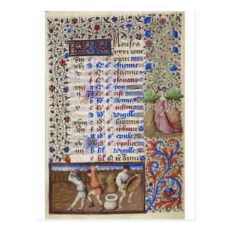 Middeleeuwse kalender: Augustus Briefkaart