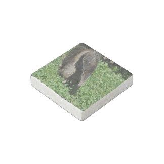 Miereneter Stenen Magneetje