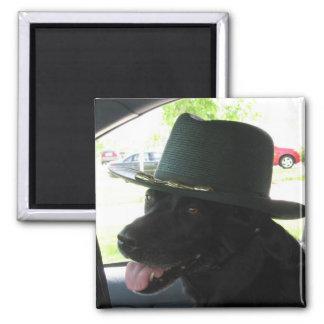 Mijn Labrador Vierkante Magneet