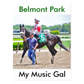 Mijn Muziek Gal wint bij Park Belmont Briefkaart