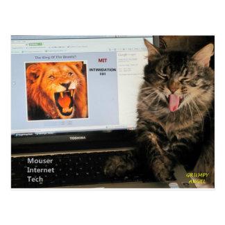 Mijn studies van de Kat bij Technologie van Briefkaart
