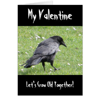 Mijn Valentijn laat Grappig van de Kraai van '' s Wenskaart