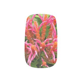 Minx Spijkers - Koraal Aphelandra Minx Nail Folie