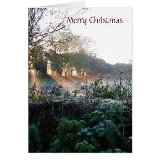 MISC 003 Kerstmiskaart, Vrolijke Aangepaste Briefkaarten 0