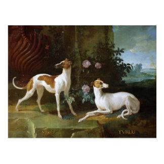 Misse en Turlu, twee windhonden van Louis XV Briefkaart