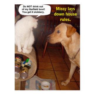 Missy bepaalt huisregels briefkaart