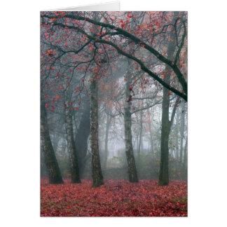 Mist in het Bos van de Herfst met Rode Bladeren Briefkaarten 0
