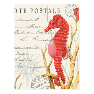 moderne wijnoogst seahorse briefkaart