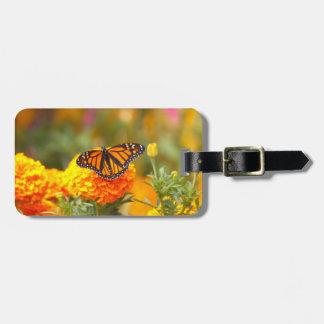 Monarch op een Goudsbloem Kofferlabels