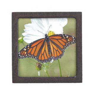 Monarch op Kosmos Premium Cadeau Doosjes