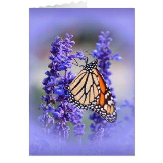 Monarch op Salvia - Vlinder Briefkaarten 0