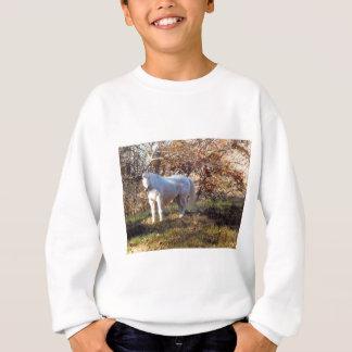 Mooi Wit Paard Trui