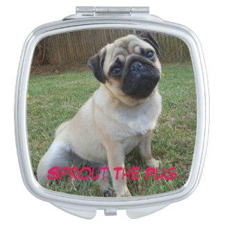 Mooie Compact Pug Reisspiegeltjes