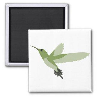 Mooie Groene Kolibrie Magneet