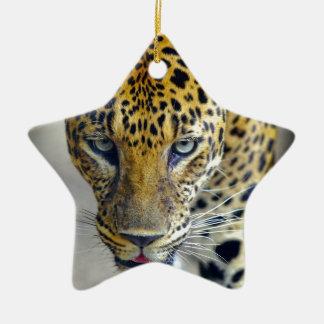 Mooie jaguar keramisch ster ornament