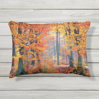 Mooie kleurrijke de herfst boszonnestralen buitenkussen