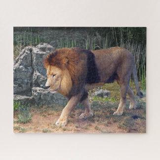 Mooie Leeuw die onder Rotsen lopen - Legpuzzel