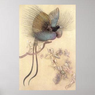 Mooie Paradijsvogel Door Warwick Goble Poster