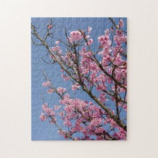 Mooie roze kersenbloesems en blauwe hemel legpuzzel