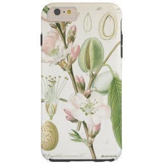 Mooie vintage bloemen botanische bloemantiquiteit tough iPhone 6 plus hoesje