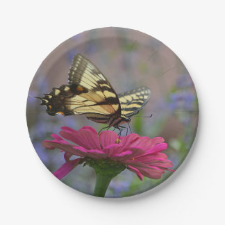 Mooie Vlinder Swallowtail Papieren Bordje