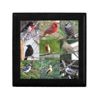 Mooie Vogels Decoratiedoosje