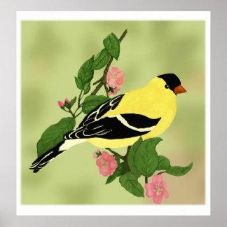 Mooie Weinig Vogel van de Distelvink Poster