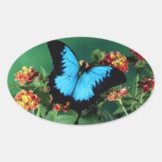 Mooie Zwarte en Blauwe Vlinder Ovaalvormige Stickers