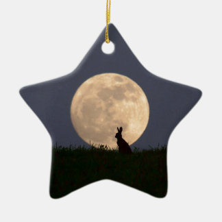 Moongazer.JPG Keramisch Ster Ornament